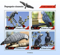 Sao Tome&Principe 2020 Grey Parrot. (623a) OFFICIAL ISSUE - Parrots