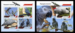 Sao Tome&Principe 2020 Grey Parrot. (623) OFFICIAL ISSUE - Parrots