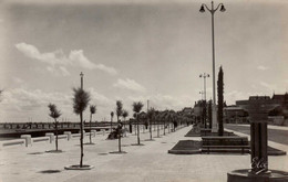 Dep 33 , Cpsm  ARCACHON , 1025 , Fontaine Sur Le Nouveau Boulevard Promenade (17529) - Arcachon
