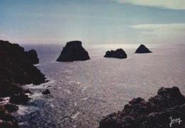 29 CAMARET-SUR-MER Coucher De Soleil Sur Les Tas De Pois - Camaret-sur-Mer