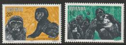 RWANDA - Faune, Animaux Protégés, Gorilles - MNH - 1983 - 1980-89: Neufs