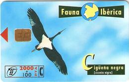 *SPAGNA - FAUNA IBERICA: CIGÜEÑA NEGRA* - Scheda Usata - Emisiones Básicas