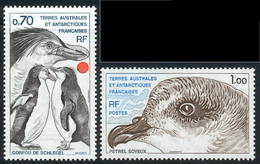 Terres Australes 1979 Yvert 81 / 82 ** TB Bord De Feuille - Ungebraucht