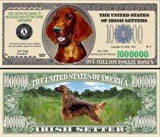 !!! USA - FANTASY NOTE -  IRISH  SETTER  DOG , 2009 - UNC / SERIES  WOOF - Other