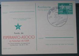 Privata Eldono De Postkarto Kun Esperanto Stampo 1981 Esperanto Asocio De GDR - Cartas
