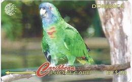 DOMINICA - JACO PARROT - 225CDMA - Dominica