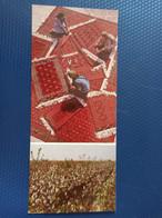 Turkmenistan, Carpet Weaving - Old Postcard - Islam - Turkmenistan