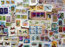 Caribbea KILOWARE StampBag 60g (2.1oz) Stamp Mixture West Indies - Otros - América