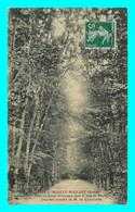 A783 / 563 80 - MAILLY MAILLET Allée De Sainte Véronique Dans Le Bois - Otros Municipios