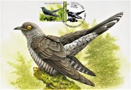 "Maximumkaart Buzin  ""Koekoek"" Met Stempel 1ste Dag Brussel 25-01-2021 - 1985-.. Birds (Buzin)"