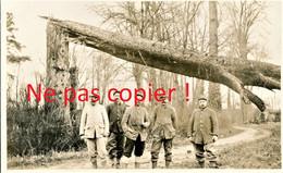 CARTE PHOTO FRANCAISE - POILUS ET ARBRE COUPE A FONTAINE LES CAPPY PRES DE CHUIGNES - FAY SOMME - GUERRE 1914 1918 - Guerra 1914-18