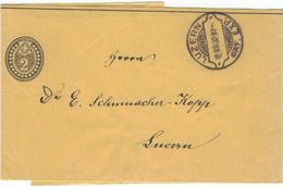 Zeitungsschleife Wrapper Ganzsache > Dr. Emil Schumacher Kopp Kantonschemiker Luzern 1902 Rasierklingen-Stempel - Officials