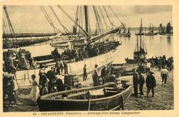 Douarnenez * Arrivage D'un Bateau Langoustier * Pêche Pêcheurs - Douarnenez