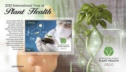 LIBERIA - 2020 - International Year Of Plant Health - Perf Souv Sheet #2 - Mint Never Hinged - Liberia