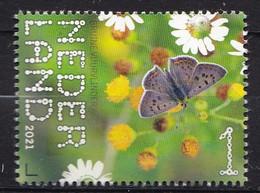 Nederland - Beleef De Natuur - 22 Februari 2021 - De Onlanden - Vuurvlinder - MNH - Schmetterlinge