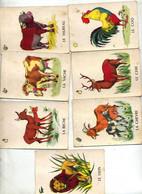 Carte à Jouer Animaux - Barajas De Naipe