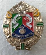 Pin's - Militaria - Armée - NEC - 1er Régiment Etranger De Cavalerie Légion - Honneur Fidélité - - Militaria