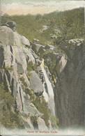 002233 - AUSTRALIA - VIC - HEADS OF BUFFALO FALLS - 1907 - Other