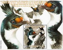 TAAF - 2021 - Birds - Cormorant Of Kerguelen - Leucocarbo Verrucosus - Mint Souvenir Sheet - Neufs