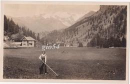 Aosta Gressoney La Trinite 1916 Lavori Agricoltura Costume Fotografica Didascalia Del Fotografo Sul Retro - Sin Clasificación