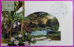 Cpa Entier Postal Tonga Tufumahina Océanie Cachet Douane Customs Nukualofa Carte Postale Ecrite De Nouméa En 1909 - Tonga