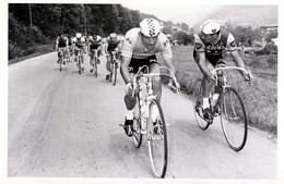 Cyclisme,  Cycliste - Ciclismo