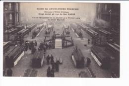 Lot 3 Cpa -Société Des Aviculteurs Français - Vue De L'exposition  Du 29 Janvier Au 2 Février 1914 Au Grand PALAIS - Non Classificati
