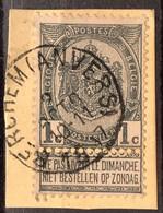 Wapenschild OBP 53 Gestempeld EC BERCHEM (ANVERS) - 1893-1907 Armoiries