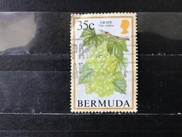 Bermuda - Fruit (35) 1994 - Bermudas