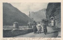 GORIZIA?-RITORNO DALLA CAMPAGNA-CONTADINECARTOLINA  VIAGGIATA IL 26-8-1916 - Gorizia