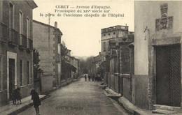 CERET  Avenue D'Espagne Frontispice Du XIVe Sur La Porte De L'ancienne Chapelle De L'Hopital Animée Peu Courant  RV - Ceret