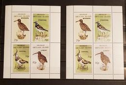 HILDASAY SHETLAND ISLANDS BIRDS 2 SHEETS PERFORED MNH - Sin Clasificación