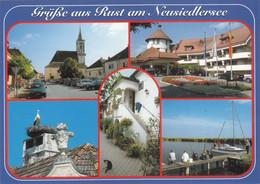 1259) Grüße Aus RUST Am NEUSIEDLERSEE - Störche Angler Kirche U. AUTOS - Katze - - Neusiedlerseeorte