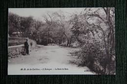MARSEILLE - L'ESTAQUE, N.D De La Galline, La Route Du Rêve - Non Classificati