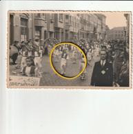 Sint-Truiden : Fruitoogstfeesten Juli 1948 ( Fotokaart ) - Sint-Truiden