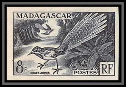 91977b Madagascar N°323 Oiseaux Bird Uratelornis Brachyptérolle à Longue Queue Essai Proof Non Dentelé Imperf ** Mnh - Neufs