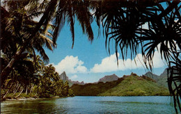 PAYSAGE POLYNESIEN - Polynésie Française