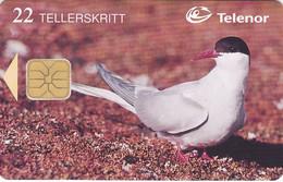 Norway - - - Phonecard Chip - - - Tern - Noruega