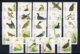 M ++ CARIBISCH NEDERLAND ST EUSTATIUS 2021 VOGELS BIRDS OISEAUX  ++ MNH POSTFRIS - Niederländische Antillen, Curaçao, Aruba