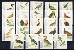 M ++ CARIBISCH NEDERLAND BONAIRE 2021 VOGELS BIRDS OISEAUX  ++ MNH POSTFRIS - Niederländische Antillen, Curaçao, Aruba