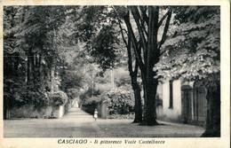 Casciago -  Lot. 3703 - Varese