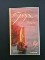 Goya, Regie: Carlos Saura, 100 Minuten, Arthouse-Film - Drama