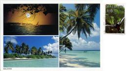 MALDIVE  Multiview  Nice Stamp Bird - Maldives