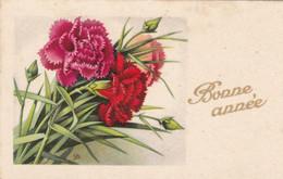 Voeux : Nouvel An : Bonne Année : Mignonette : Fleurs Oeillets : édit. - Photochrom N° 560 Glacée - Neujahr