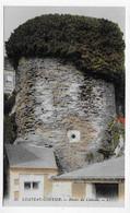 CHATEAU GONTIER - N° 38 - RUINES DU CHATEAU - CPA COULEUR NON VOYAGEE - Chateau Gontier