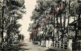 44.  QUIMIAC .  Avenue De La Plage De Lanséria. - Other Municipalities
