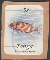 Tonga 1984-85 Used Sc #565 3s Holocentrus Ruber Fish - Tonga (1970-...)