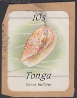 Tonga 1984-85 Used Sc #569 10s Conus Bullatus Sea Shell - Tonga (1970-...)