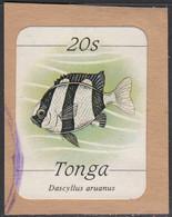 Tonga 1984-85 Used Sc #572 20s Dascyllus Aruanus Fish - Tonga (1970-...)
