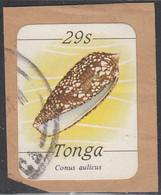 Tonga 1984-85 Used Sc #573 29s Conus Aulicus Sea Shell - Tonga (1970-...)